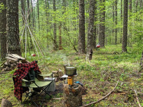 Camp Rice & Mushrooms
