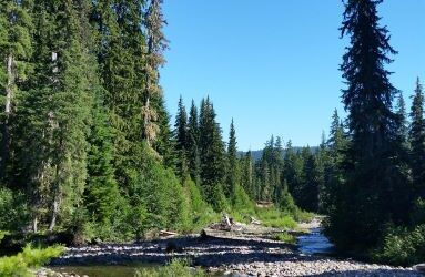 Pistol Creek